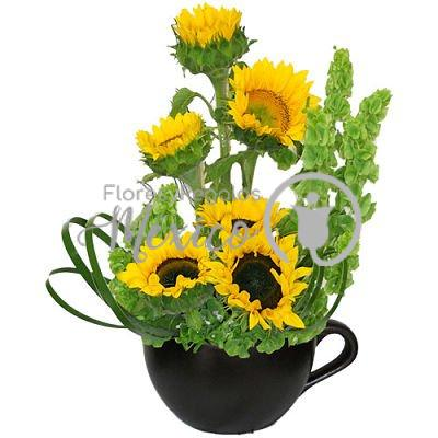 taza-de-girasoles_opt