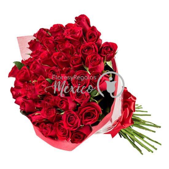 50-rosas-rojas-en-ramo