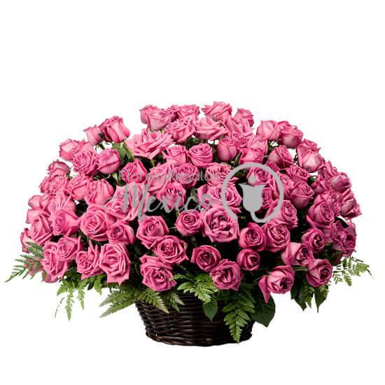 100-rosas-fiusha-en-canasta