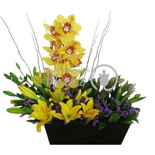 Orquideas en base